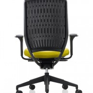 Evolve Chair (8)