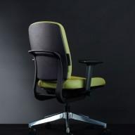 Stroll Chair (9)