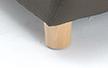 Solent_wooden_leg