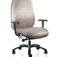 Excelsior Bariatric High Back Office Swivel Chair 660