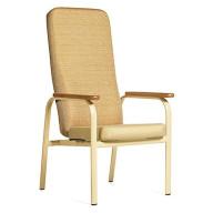 Bariatric Chairs (10)